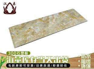 300石塑集成(cheng)牆(qiang)板(ban)